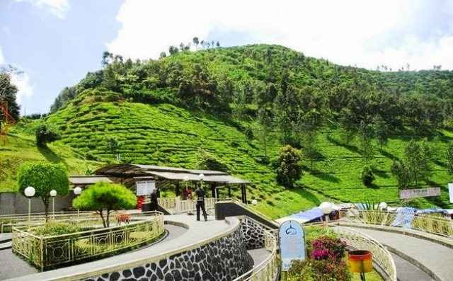Tempat Wisata Puncak Bogor - Wisata Citamiang