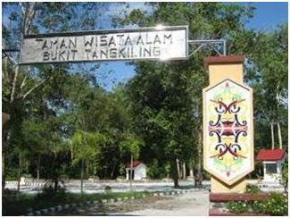 Taman Nasional Bukit Raya -Tempat wisata di Palangkaraya