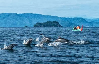 Tempat Wisata Di Bandar Lampung - Teluk Kiluan