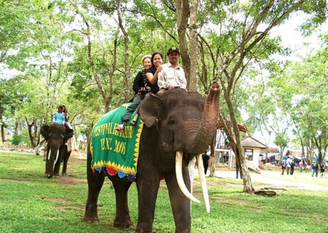 Tempat Wisata Lampung - Taman Nasional Way Kambas