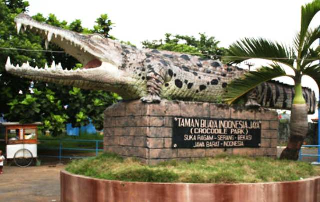 Taman Buaya Indonesia Jaya