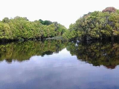 Danau Tahai -Tempat wisata di Palangkaraya