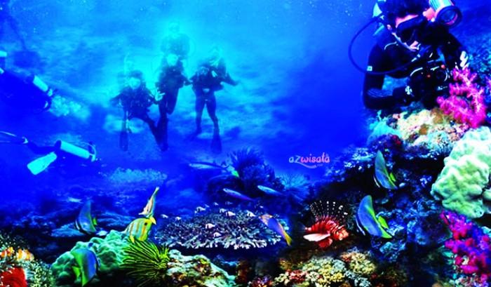 Taman Laut Bunaken di Sulawesi Utara